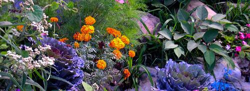 Atelier di composizione floreale